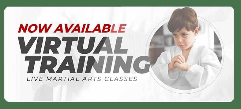 VIRTUALPOPUPSPARK.1.1, Legacy Martial Arts  Quincy, IL